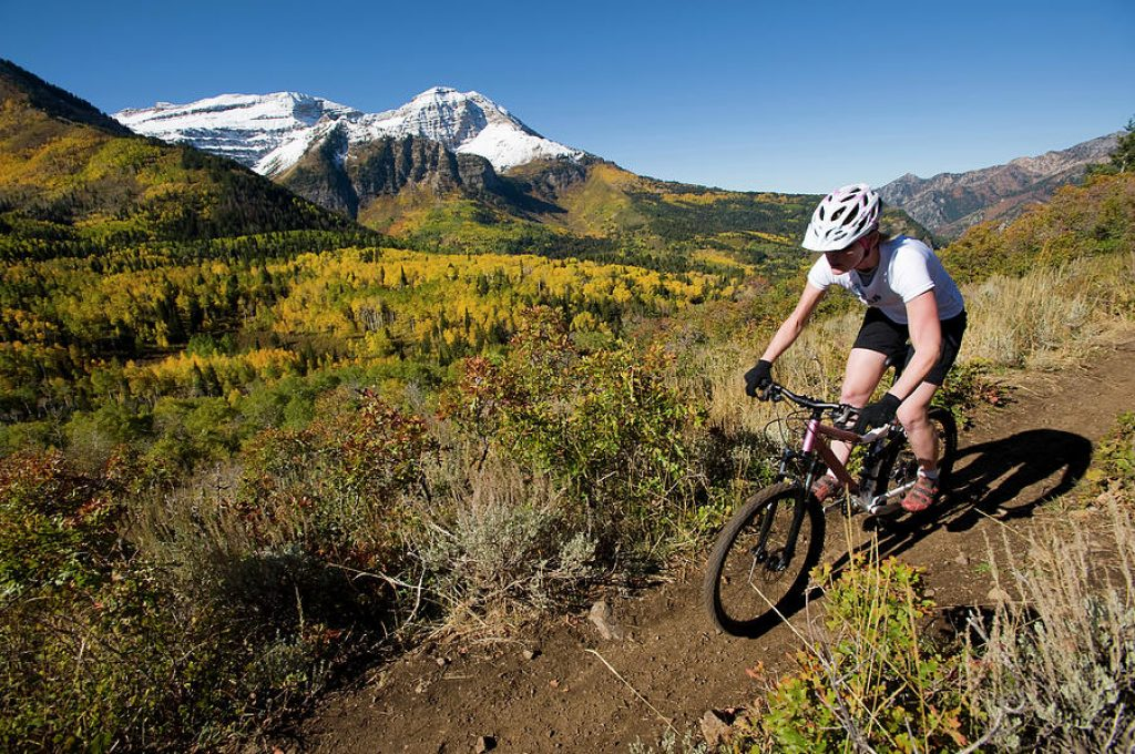 female mountain bike brands