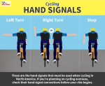 15 Essential Bicycle Rules of the Road   Must Knowing Fact to Safe Road Riding