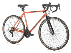 7 Best Entry-Level Road Bike | Best For Durable, Accessible & Comfortable | Free Shipping| Review 2019
